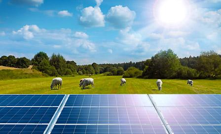 Paneles Solares Agronegocio|Global Solare