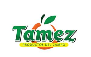 client_logo_Tamez